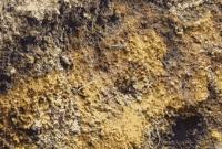 Pengertian Tanah Andosol