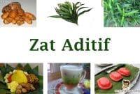 Zat-Aditif